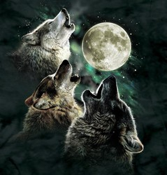 Mountain Three Wolf Moon