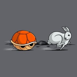 The Hare and The Shell