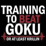 Training To Beat Goku