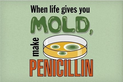 When Life Gives You Mold, Make Penicillin