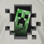 Minecraft Creeper Inside