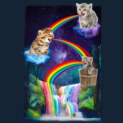 Kitten Colorfalls