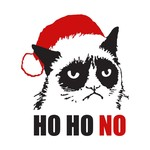 Grumpy Christmas Cat
