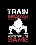 Train Insaiyan Or Remain The Same