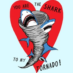 You Are The Shark To My Tornado