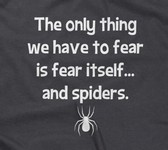 The Only Thing We Have To Fear Itself... And Spiders