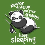 Never Give Up On Your Dreams - Keep Sleeping