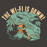 The WiFi Is Down!