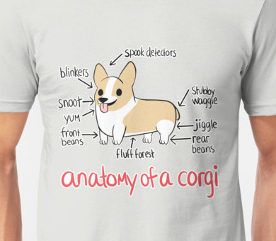 Anatomy of a Corgi