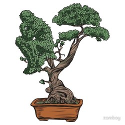 Thinking Bonsai